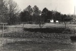 Clothesline, Trees, and House in the Distance by Rayford B. Taylor