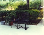 Shrubs and Outdoor Seating at Unknown Home by Rayford B. Taylor