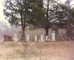 Cemetery Located at Johnston-Cooper-McRae House by Rayford B. Taylor