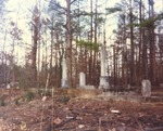 Scarbrough Lot in Cemetery Located in White Plains, Alabama 1 by Rayford B. Taylor