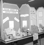 1972 Alabama Regional Social Studies Fair 5 by Opal R. Lovett