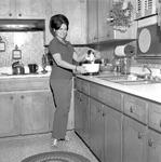 Anne Hill, 1972-1973 Secretary 1 by Opal R. Lovett