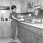 Anne Hill, 1972-1973 Secretary 2 by Opal R. Lovett